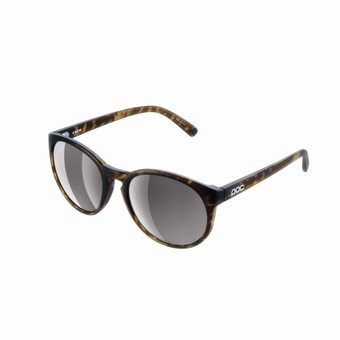 KNOW90121812VSI1-Know Tortoise Brown